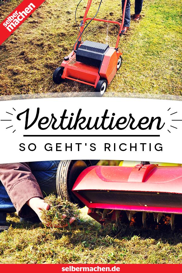 Rasen vertikutieren: So geht's richtig #herbsgarden