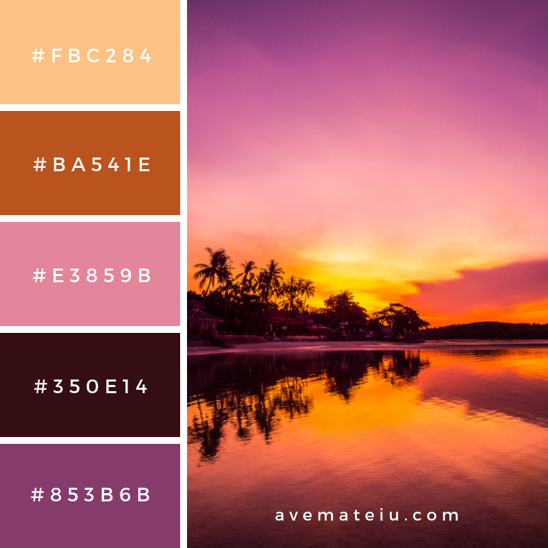 Tropical Beach Color Palette: Beautiful Tropical Beach Sea And Ocean With Coconut Palm