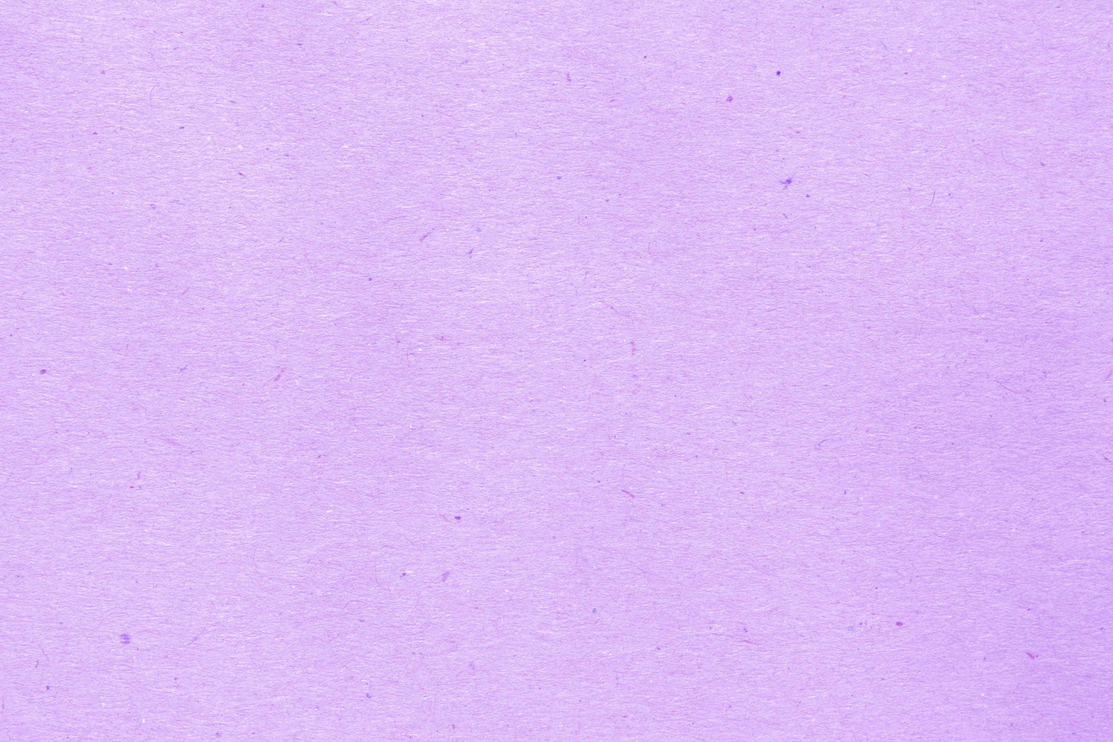 Light Purple 11 Light Purple Background Photo Texture Purple Backgrounds