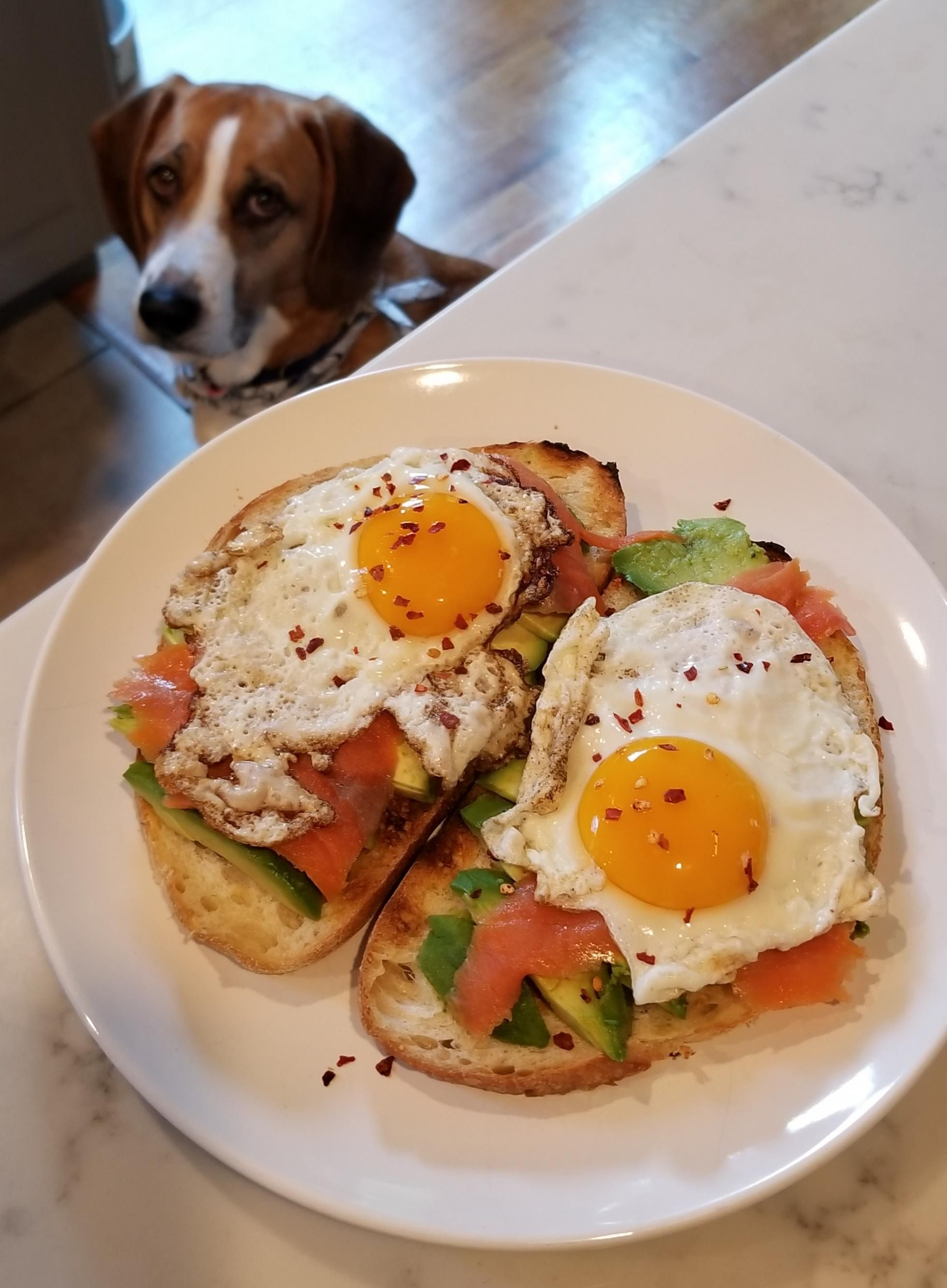 [HOMEMADE] Fried Eggs Over Avacado Toast Avacado toast, Food