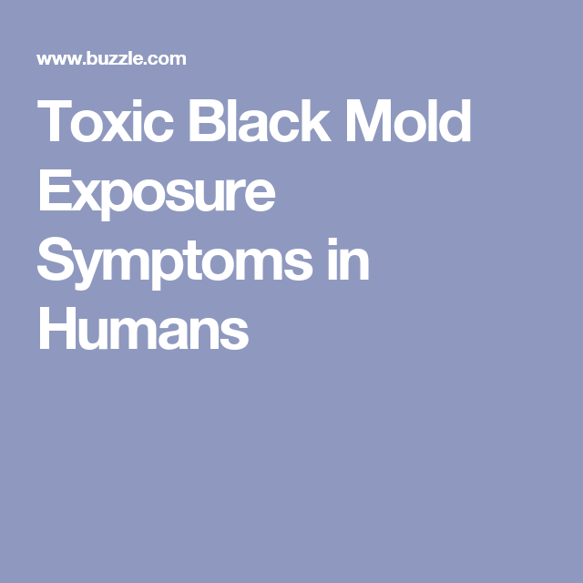 Toxic Black Mold Exposure Symptoms In Humans Kill