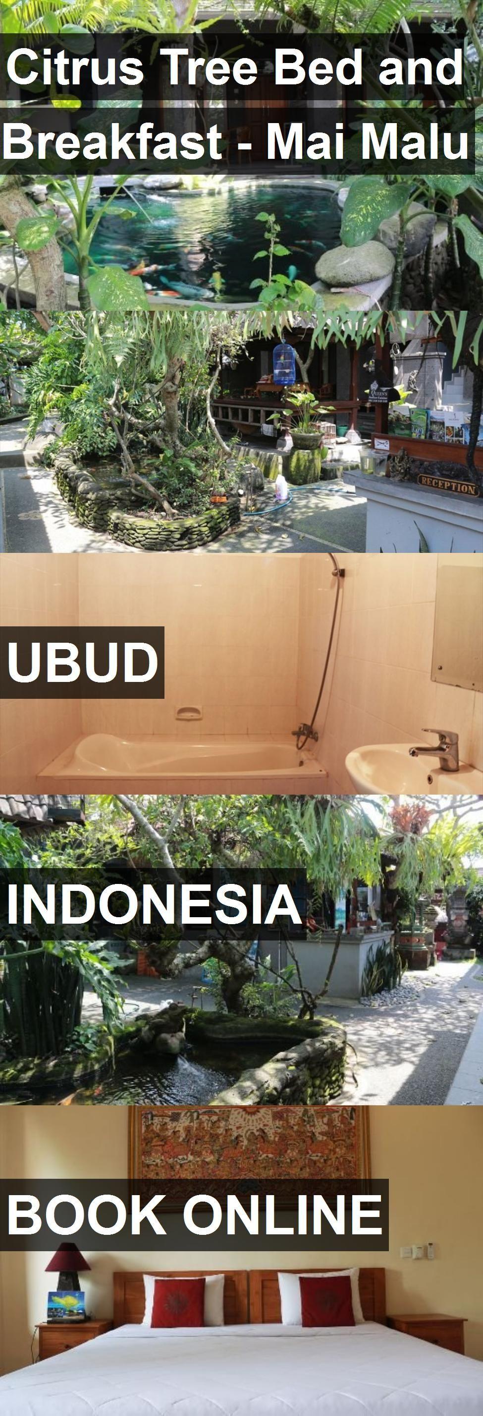 Hotel Citrus Tree Bed and Breakfast Mai Malu in Ubud