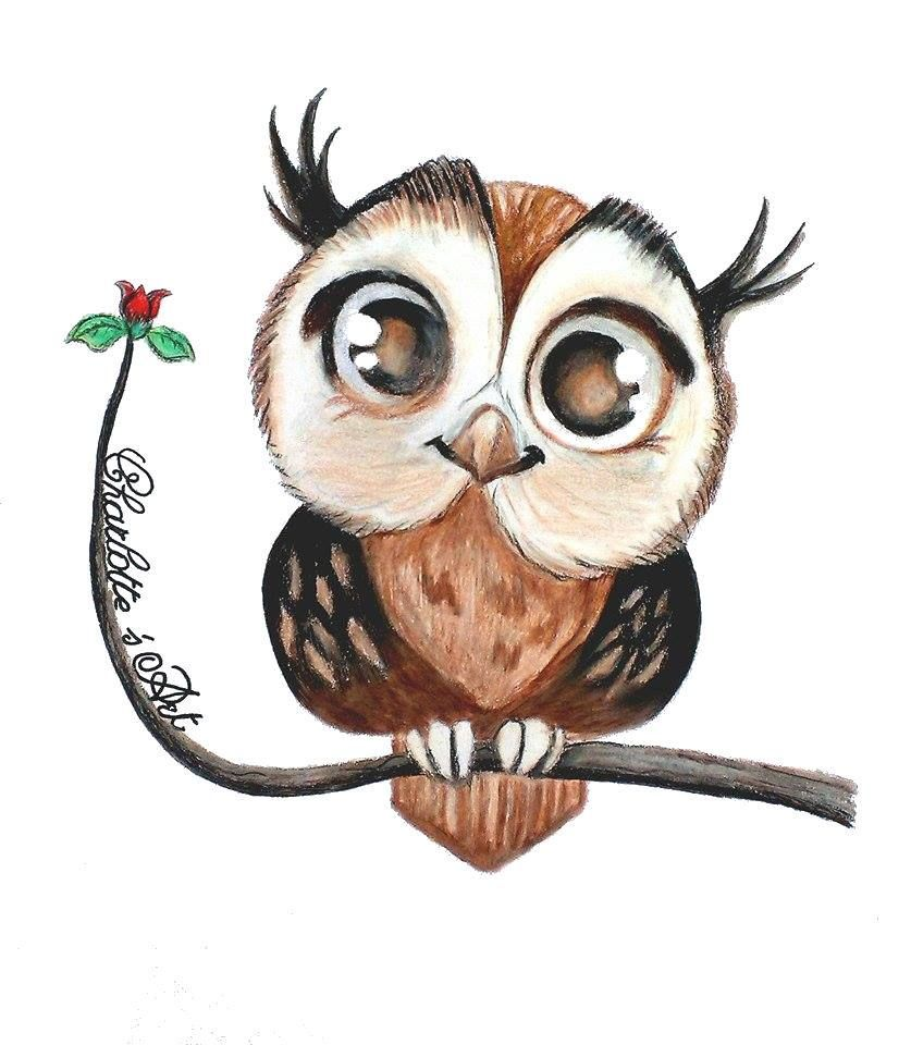 Owl Https Www Facebook Com Pages Charlottes Art E1 83 A6 684155078303844 Ref Hl Owls Drawing Cute Owl Drawing Drawings Pinterest