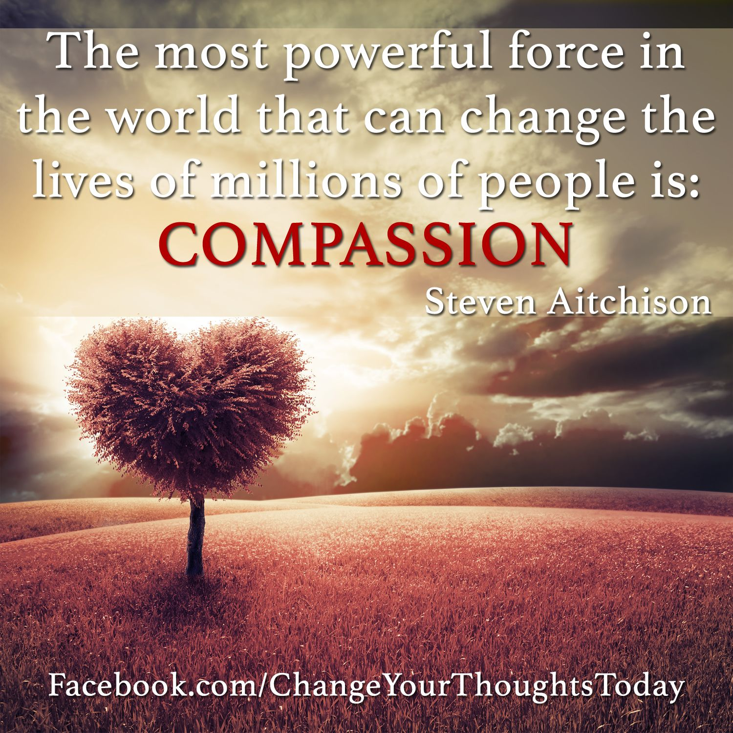 Compassion Quotes Powerful Compassion  #motivational  More At  Quotes  Pinterest