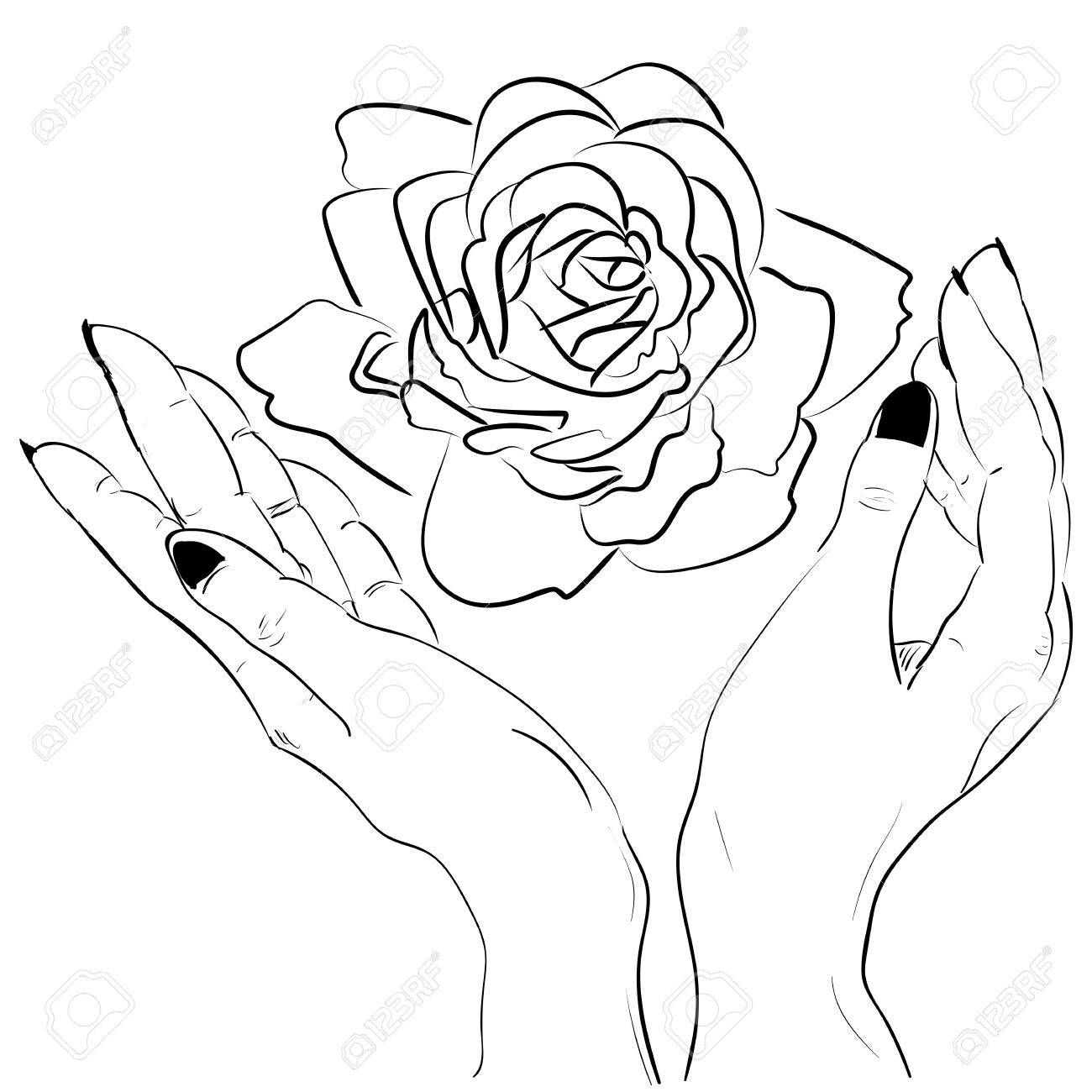Hands Holding A Rose Flower Isolated Outline Hand Drawn Sketch Line Vector Illustration Illustration Af Flower Drawing How To Draw Hands Minimalist Flowers