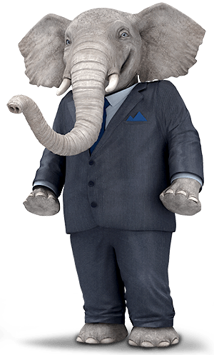Elephant Auto Insurance Quote Elephant Auto Insurance  Get A Quote & Save A Ton On Car Insurance