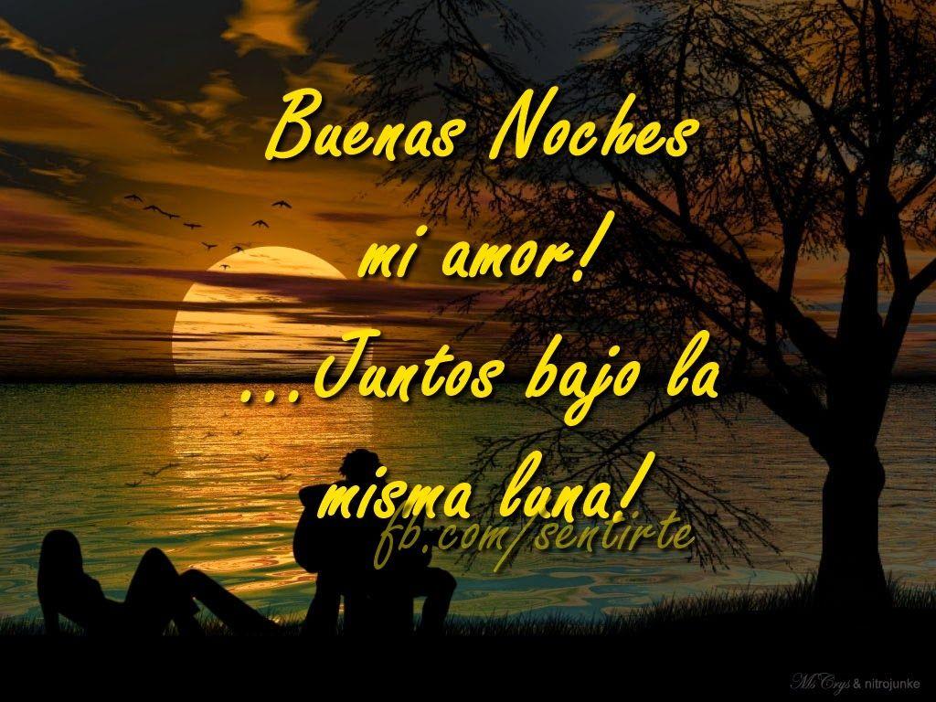 Amor Mio •áƒ¦à³‹ÎµÑ—з Buenas noches amor
