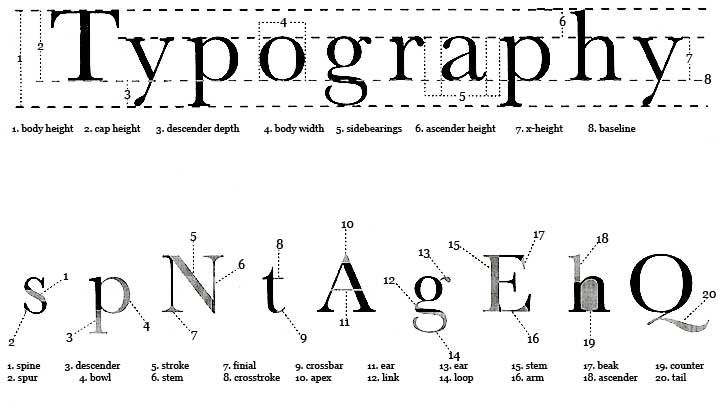 test drassiner com projects type_website index html | Typography