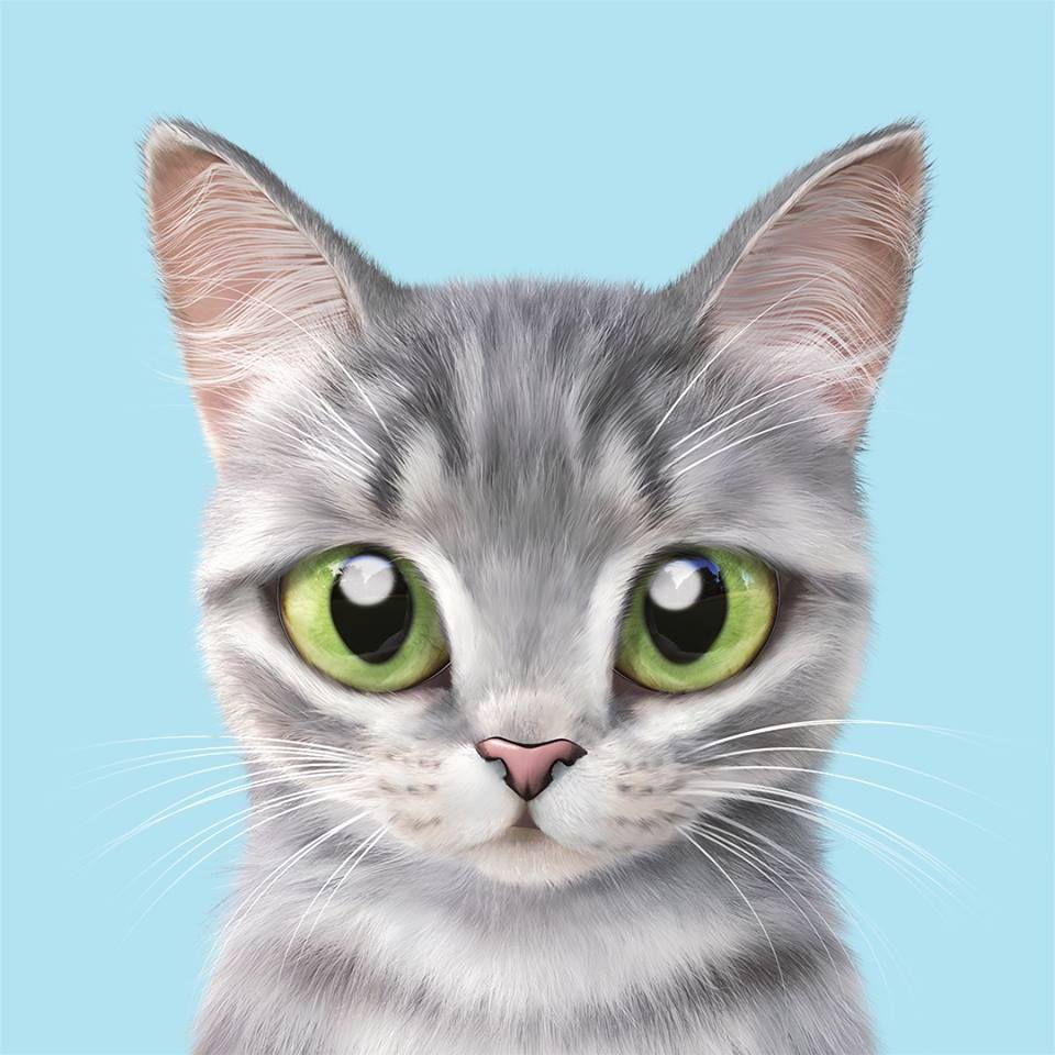 Pin De Lari Moro Em Art Ilustracoes De Animais Papel De Parede De Gato Gatinhos