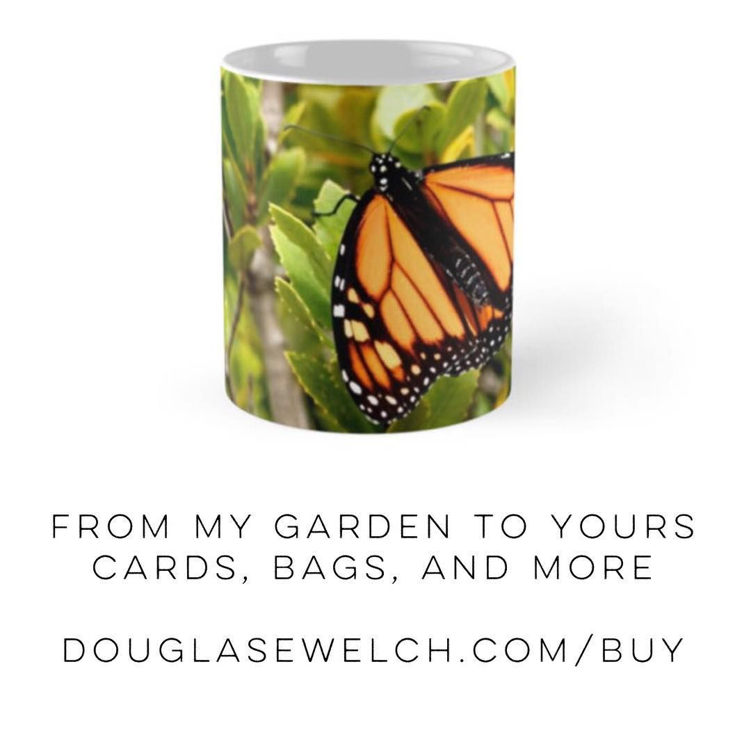 "Get this ""Butterfly in the Garden"" mug and more at http://DouglasEWelch.com/buy - also on tote bags, cards, smartphone covers and more! #nature #naturelovers #outdoors #butterfly #insect #orange #products"