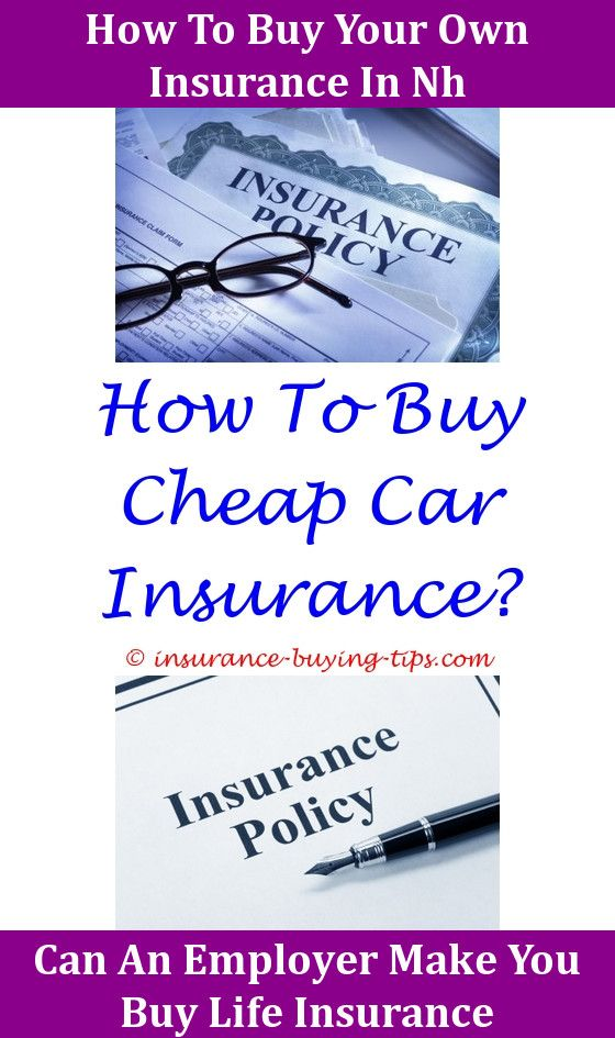 Small Business Insurance Quote What Is Auto Insurance  Life Insurance Premium And Small Business .