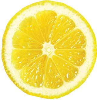 Pix For Gt Lemon Slice Png Lemon Slice Lemon Lemons