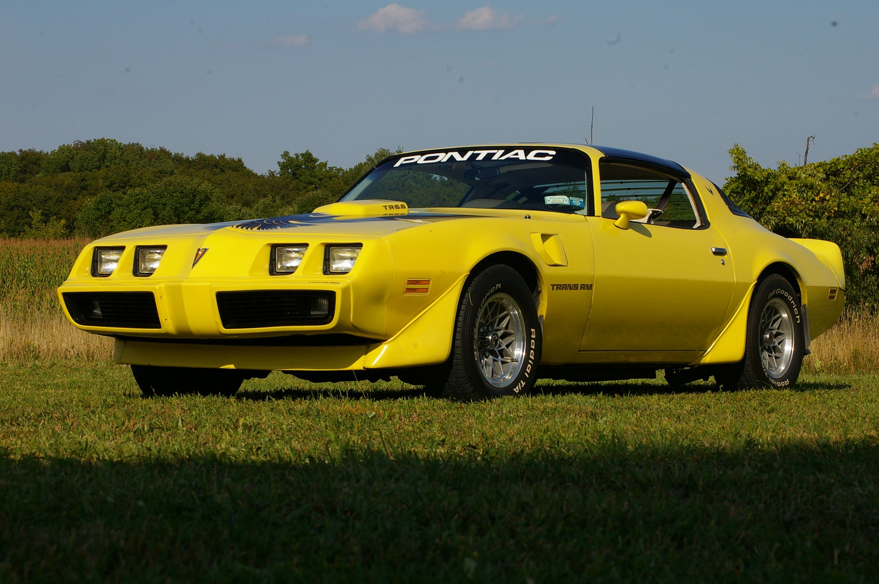 1979 Trans Am- bought it new in April of 1979. It is an unrestored 400/4spd  car with a little… | Pontiac firebird trans am, Pontiac firebird, 1979  pontiac trans am