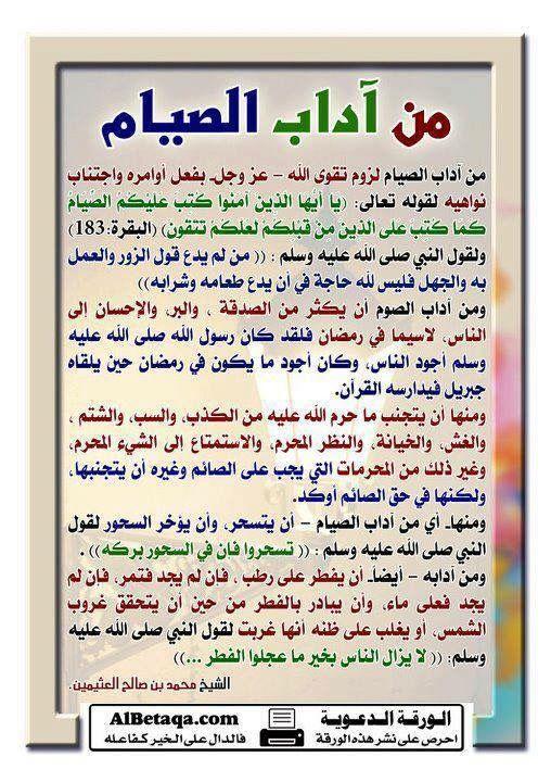 Conseils Islam Facts Quran Tafseer Islam