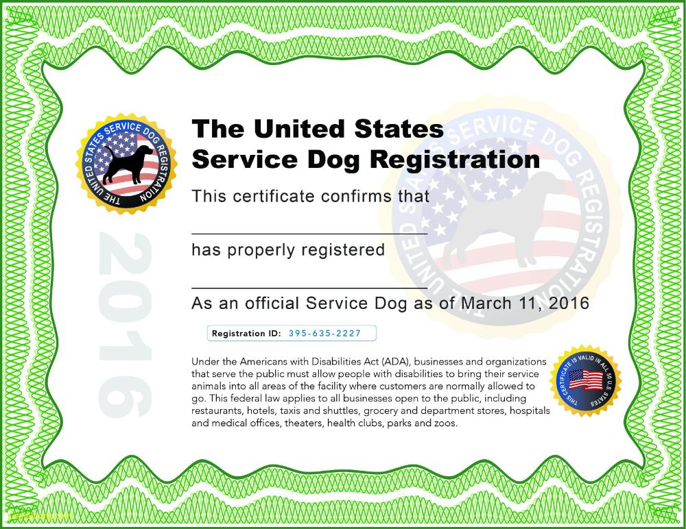 Service Dog Certificate Template Luxury Training Certificates Intended For Service Dog Certificate Temp Training Certificate Certificate Templates Service Dogs