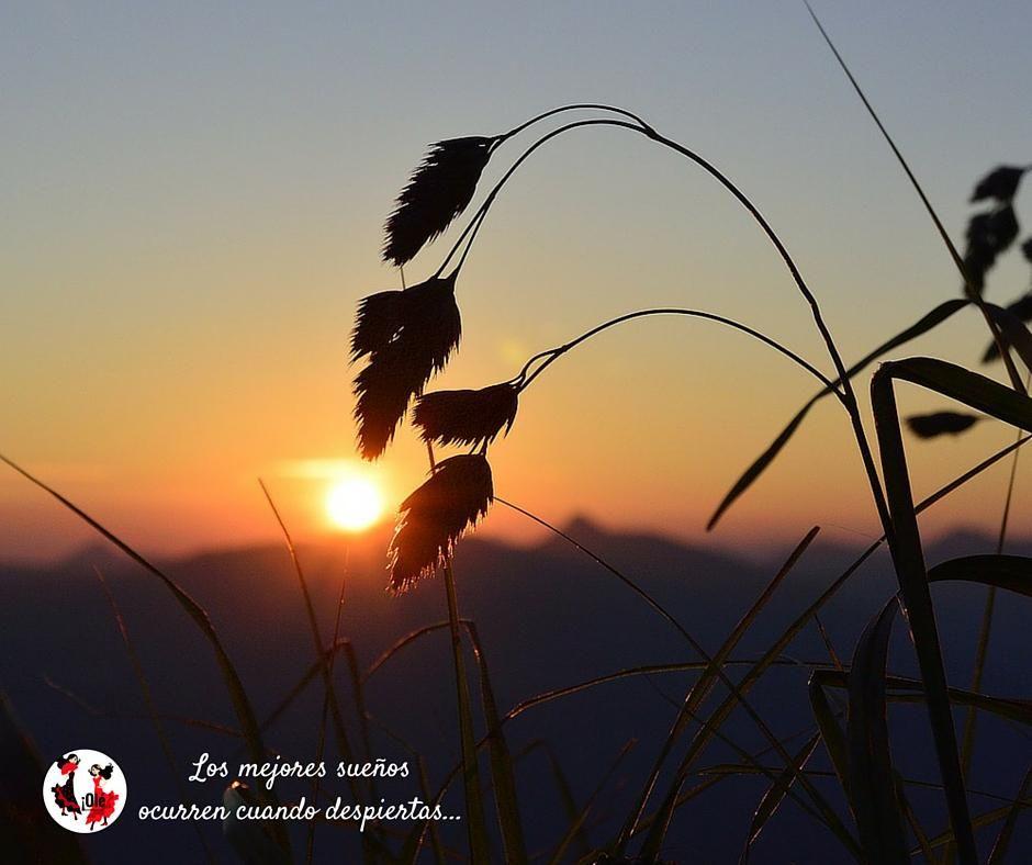 Abrir los ojos y amanecer en #Andalucía...no se nos ocurre una manera mejor de empezar el día. #FelizSábado ;))