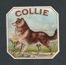 Collie Dog on Original Antique Cigar Box Label Vintage Art
