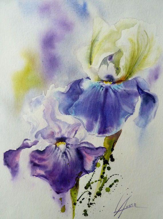 Aquarelle Iris 30x40 3 Aquarelle Fleurs Peinture Aquarelle