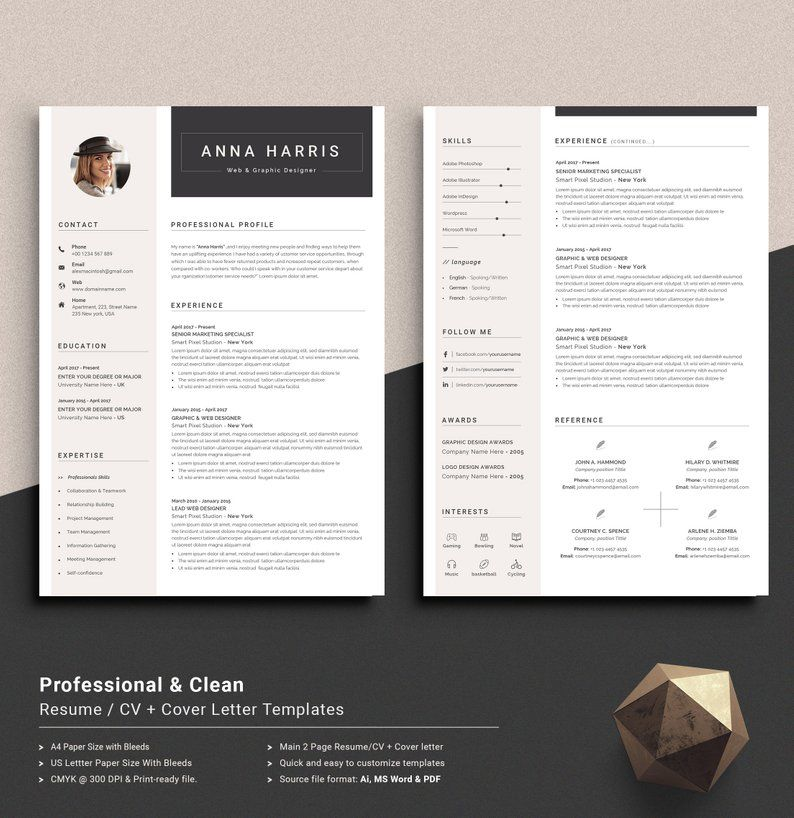 Professional Resume Template Word Resume CV Template