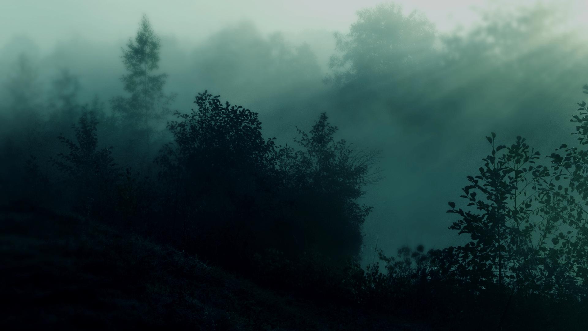 Aesthetic Lockscreen Tumblr Stunning Wallpapers Landscape Wallpaper Forest Landscape