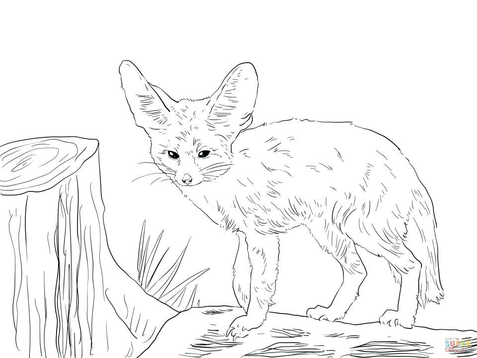 Pin By Shelley Mccandless On Quiet Book Pages Fox Coloring Page Animal Coloring Pages Puppy Coloring Pages
