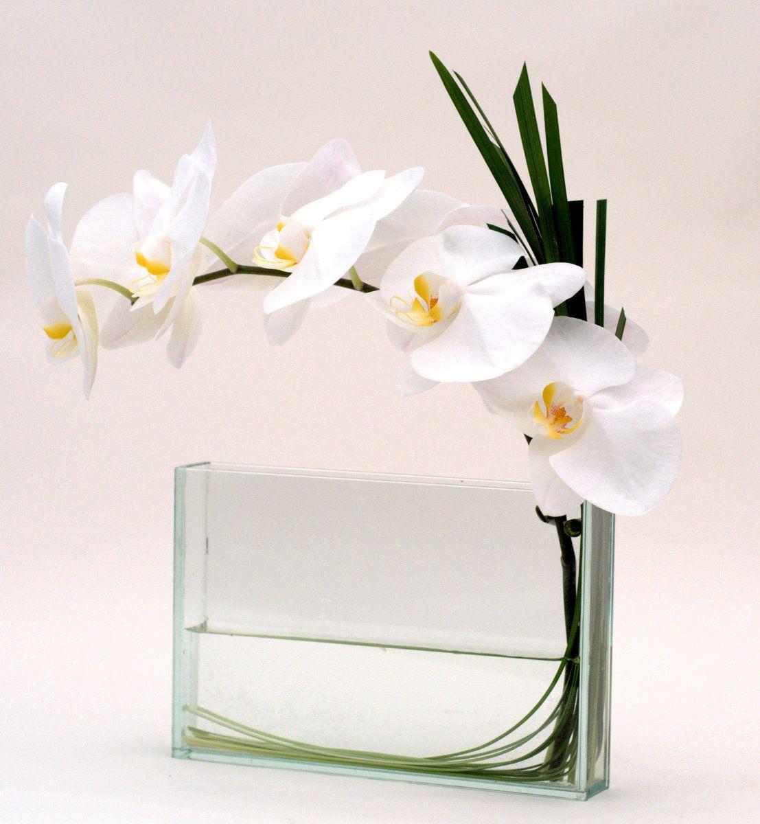 Tige D Orchidees Avec Tiges De Bergras Dans Vase Transparent Orchid Arrangements Flower Arrangements Modern Flower Arrangements