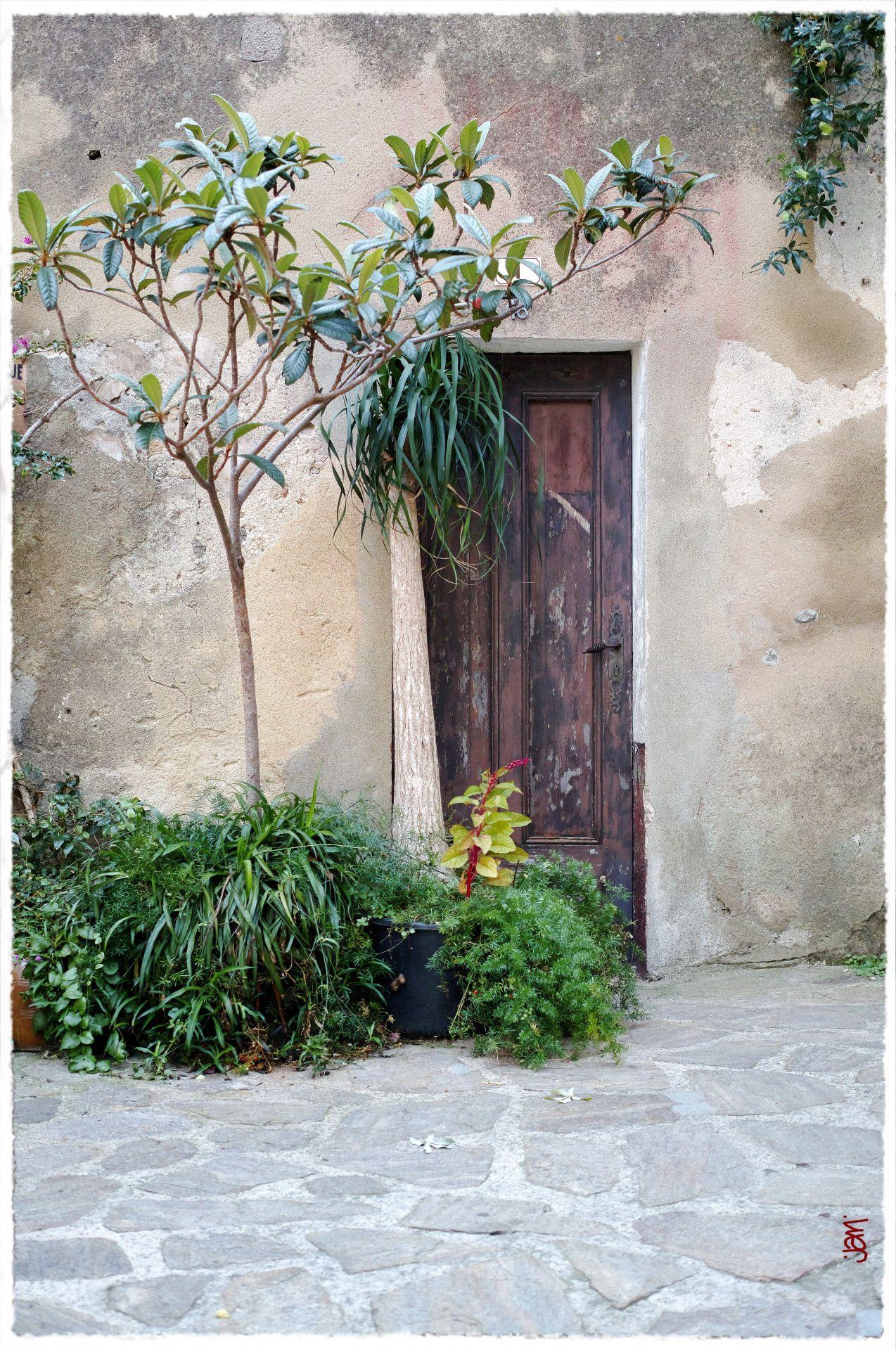 La petite porte camouflée (ou presque) … à Ramatuelle :-)