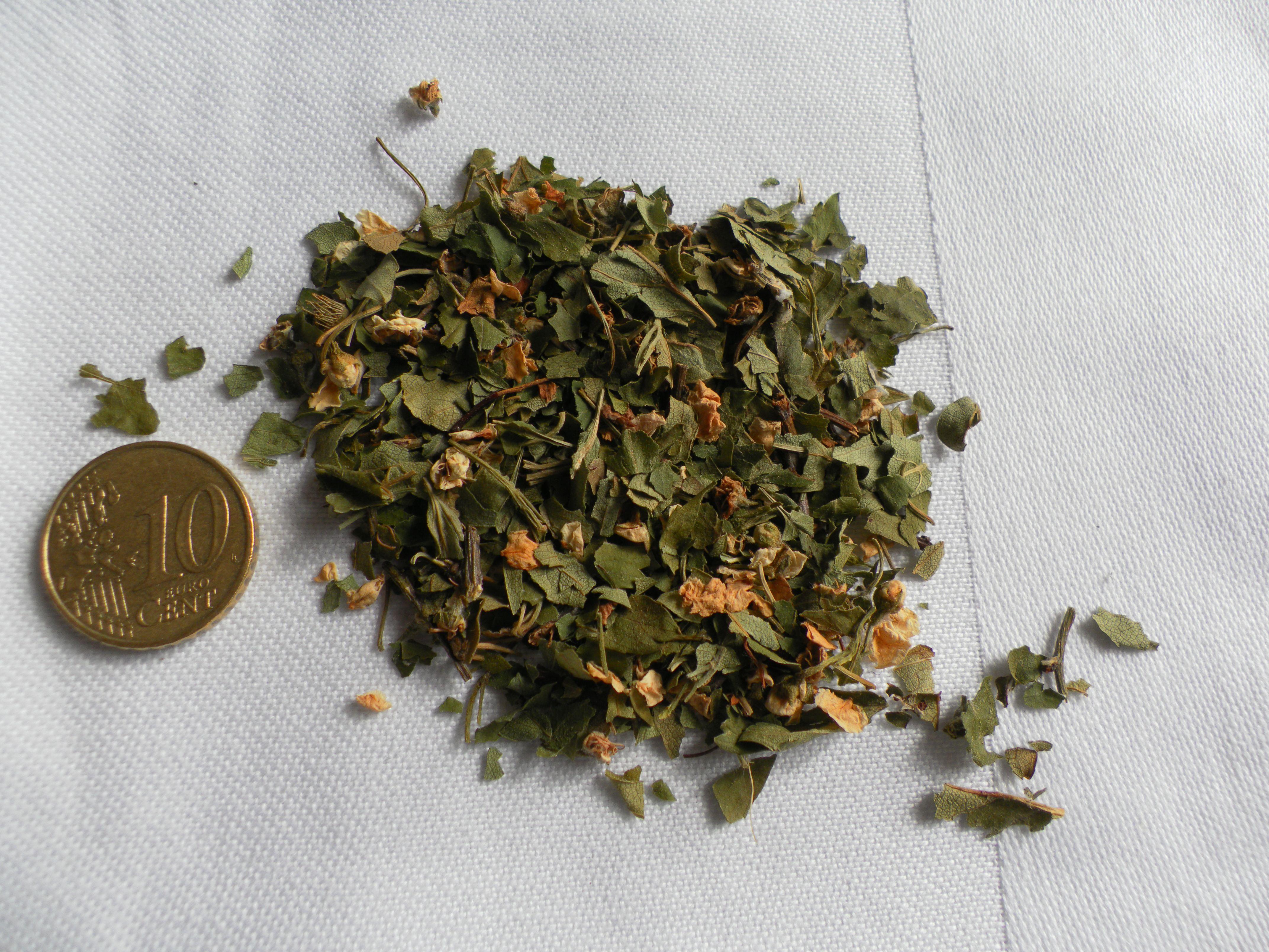 Aubépine fleurs et feuilles. Crataegus oxyacantha ROSACEES..