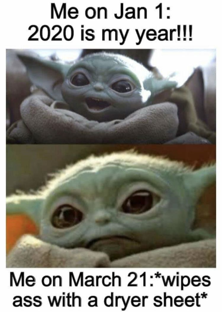 2020 Is My Year Yoda Funny Funny Relatable Memes Stupid Funny Memes