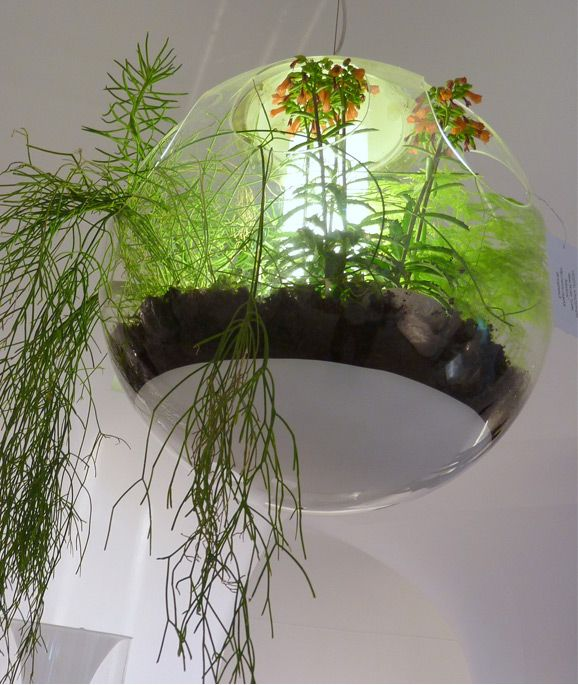 Babylon chandelier by alexis tricoire indoor gardens pinterest no end to gardens babylon chandelier is an ode to nature a transparent bubble houses living plants creating a suspended garden lamp aloadofball Image collections