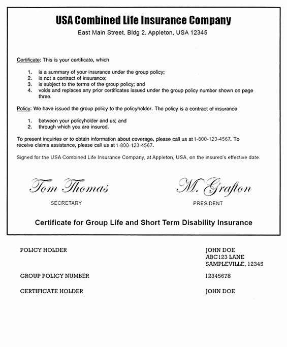 Alarm Certificate For Insurance Template New Example A Term Life