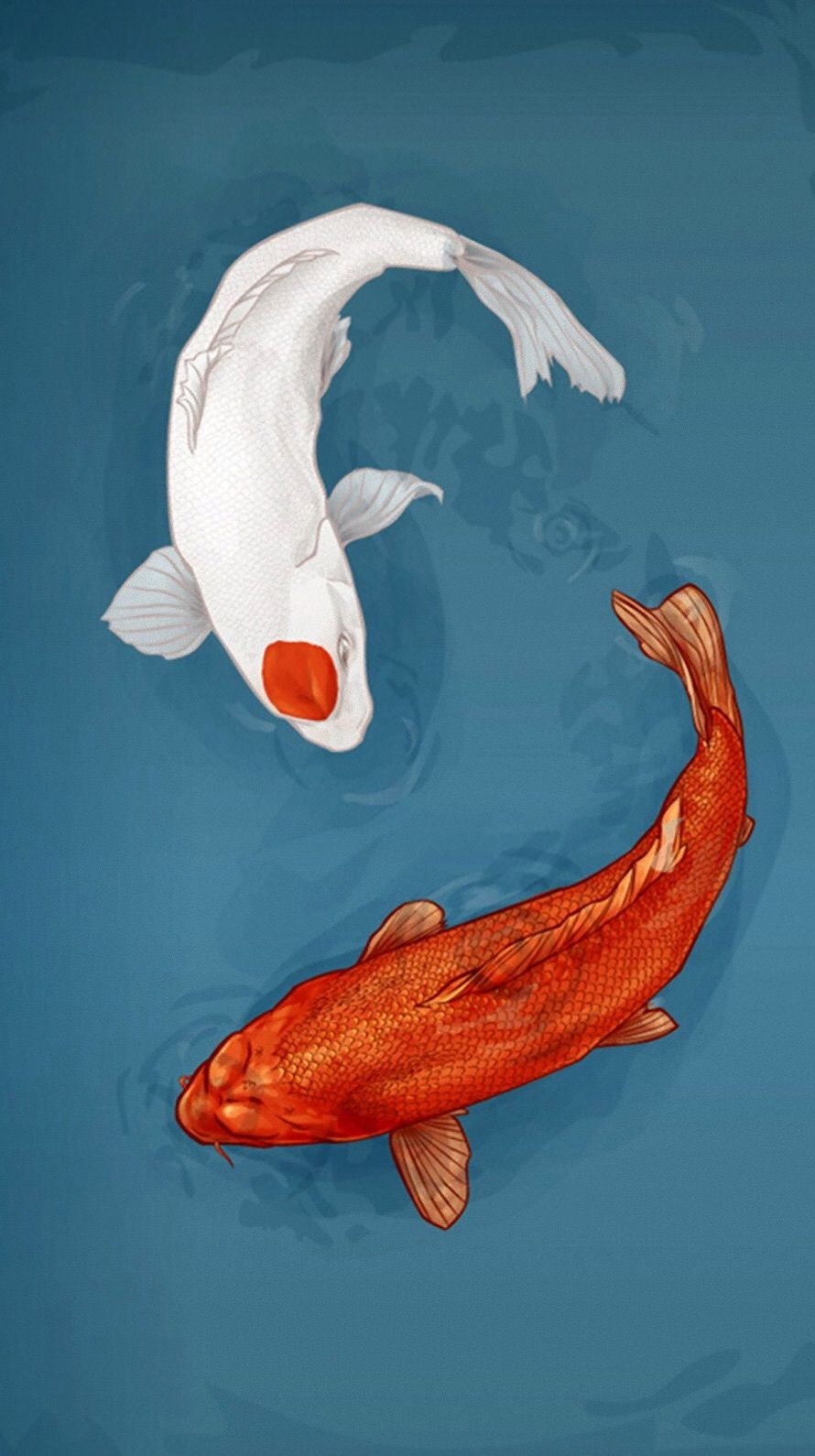 Pin By Chanel Aprahamian On Anime Wallpapers Fish Drawings Underwater Drawing Underwater Images