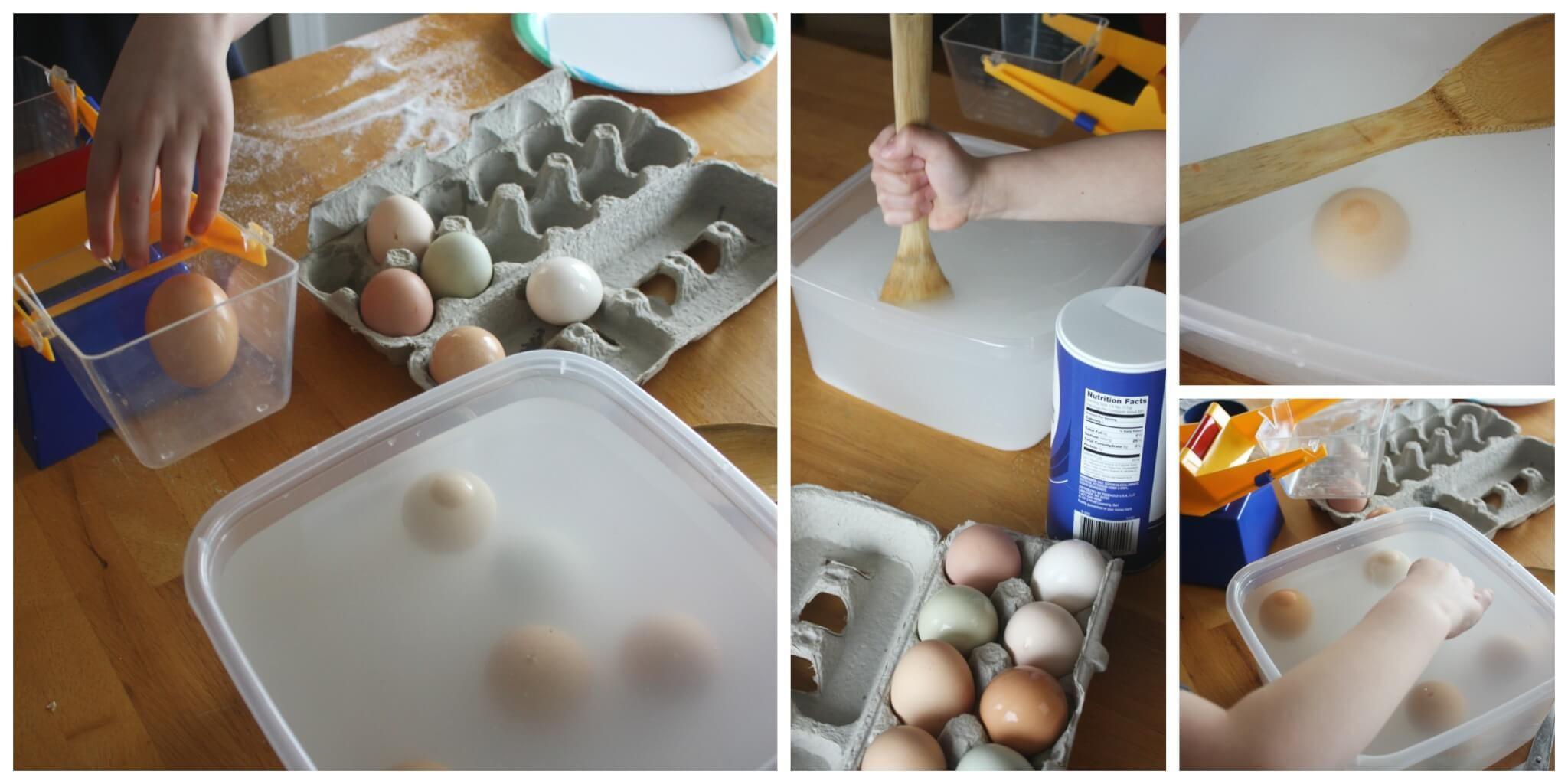 Egg Stem Real Egg Science Exploring Eggs Observing Sink