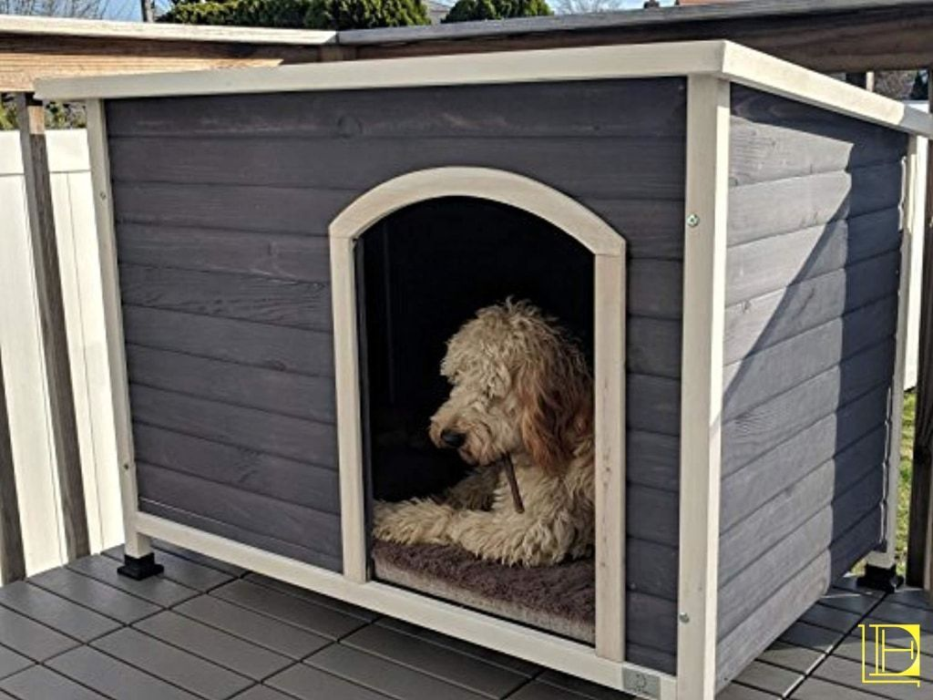 A4pet Outdoor Dog House Weather Protected Raised Easy To Clean Small Medium Large Size Available Outdoor Dog House Outdoor Dog Dog House