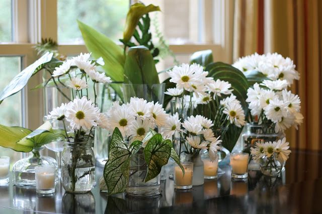 A Variety of Vases
