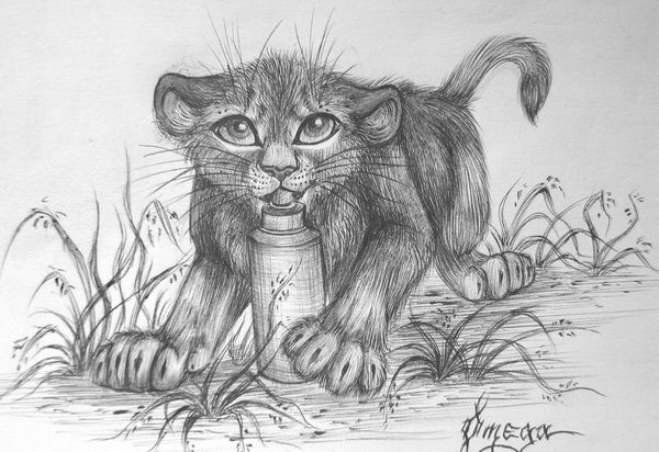 The Lion Cub -10  Cool Lion Drawings for Inspiration, http://hative.com/lion-drawings/,