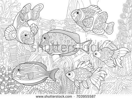 sunken ship / fish cool Sea Life Coloring Pages For Trend | Hagio ... | 341x450