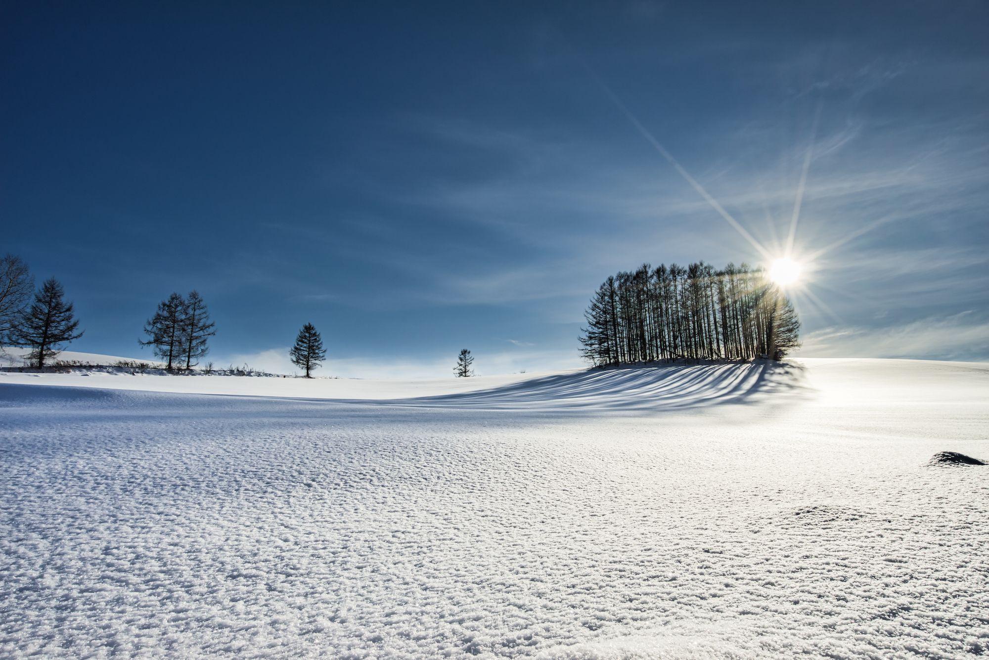 This photo taken by Masa. . . . . . #PASHADELIC #絶景delic . #日本の絶景 #北海道 #hokkaido #マイルドセブンの丘 #biei #snow . . #sony #ilce7r #beautifulview #igers #ig_japan #instagood #instajapan #japan #japan_daytime_view #japantravel #japantrip #landscape #nature #natureshots #nature_shooters #naturephotography #photooftheday #photography #photo_jpn #photo_travelers