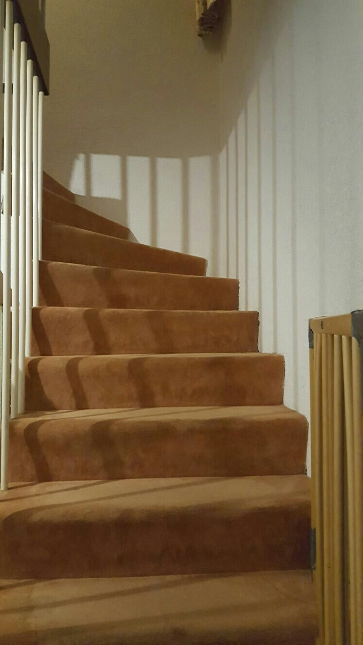 vorher (teppich) | treppe sanieren mit laminat | pinterest