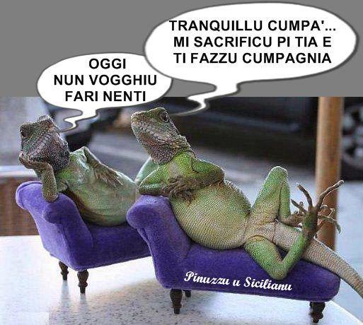 Carinissime Vignette Siciliane Per Ridere Un Po Citazioni