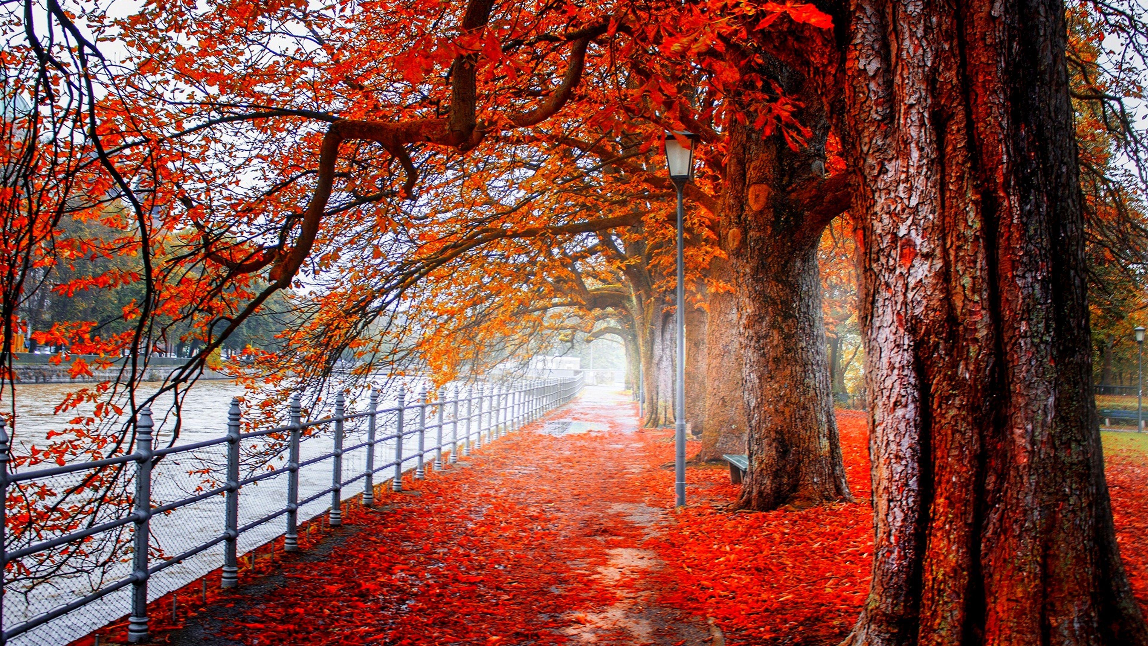 Pin By Nicolas Rivero On Art Wallpapers Autumn Landscape Hd Nature Wallpapers Landscape Wallpaper