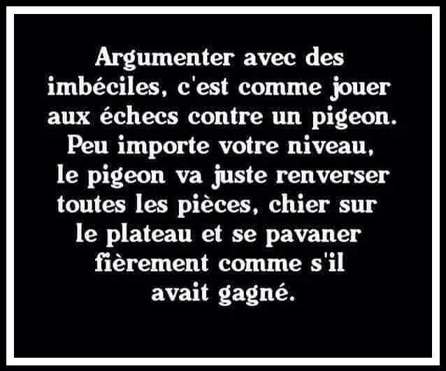 Argumenter avec des imbéciles | Citations reflexions ...