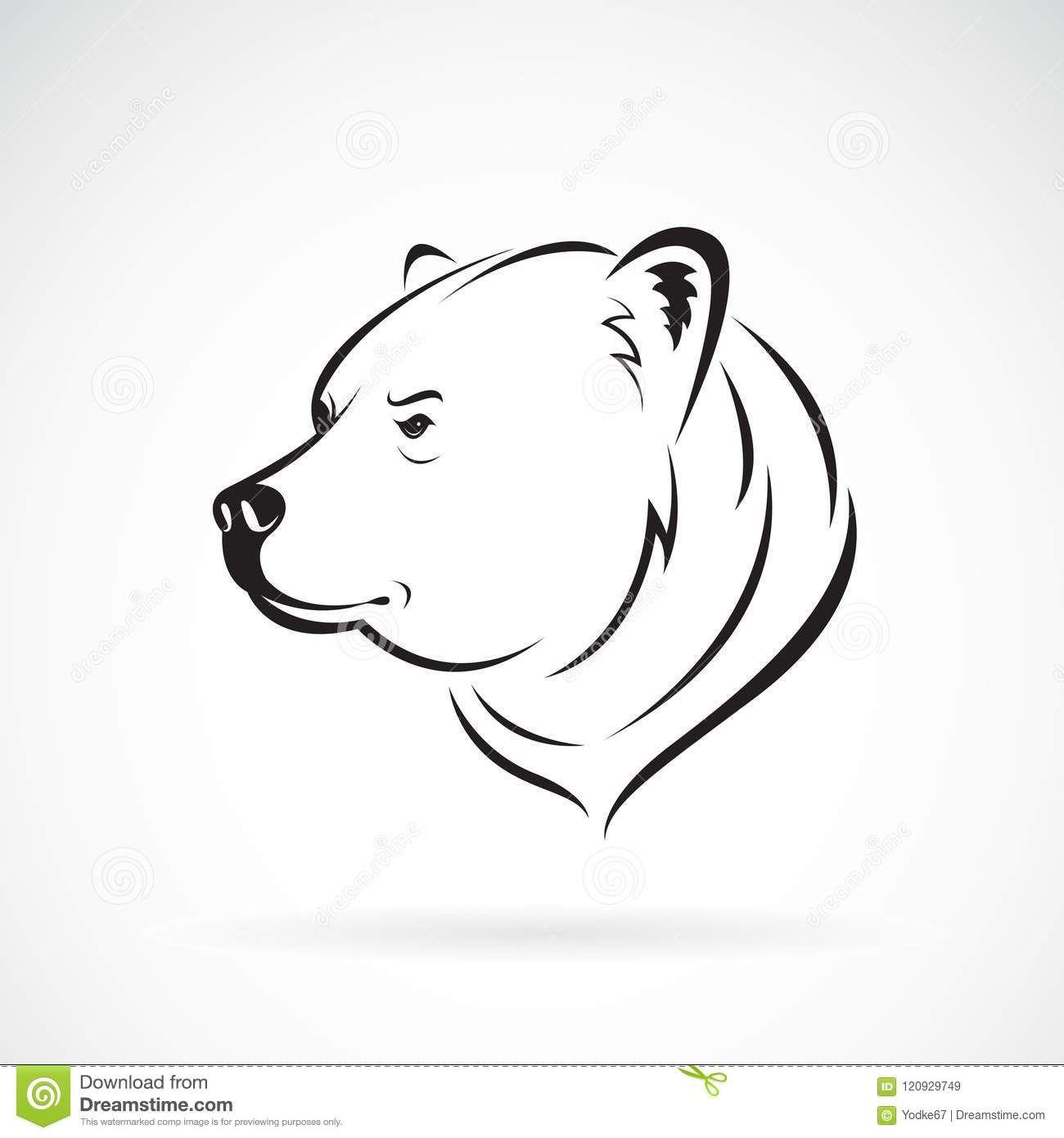 Vector Of Bear Head Design On White Background Wild Animals Stock Bear Art Animal Line Drawings Bear Sketch