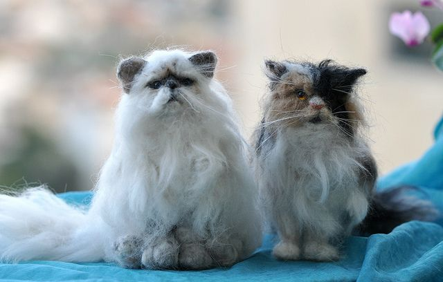 needle felted cats by Daria Lvovsky
