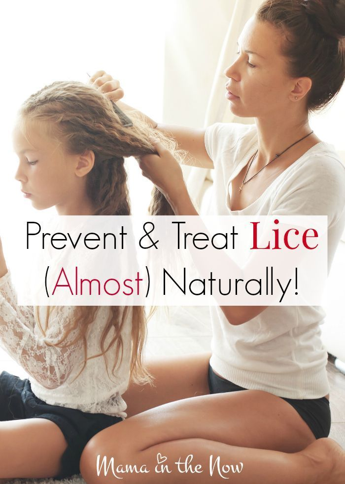 Prevent and treat lice (almost) naturally. Get rid of the ...