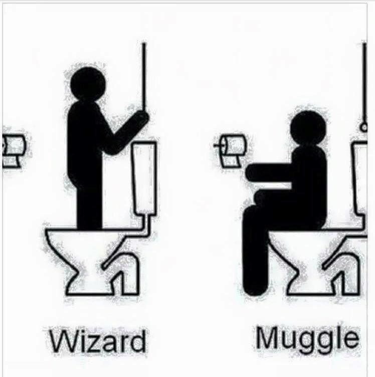 eu odeio o homework da wizard