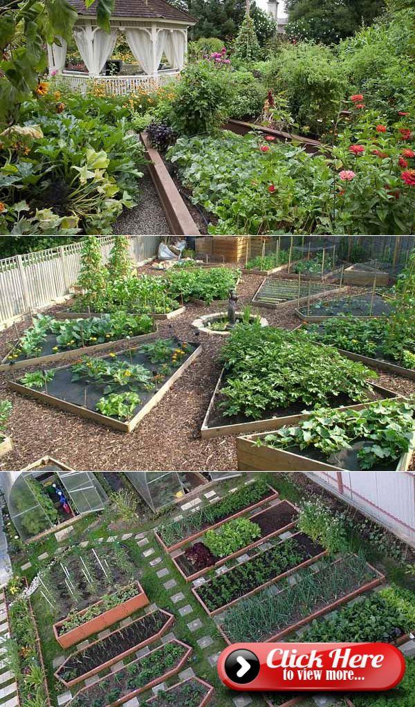 Design Of A Kitchen Garden The Hands 100 Photos Small Backyard Gardens Garden Layout Backyard Vegetable Gardens