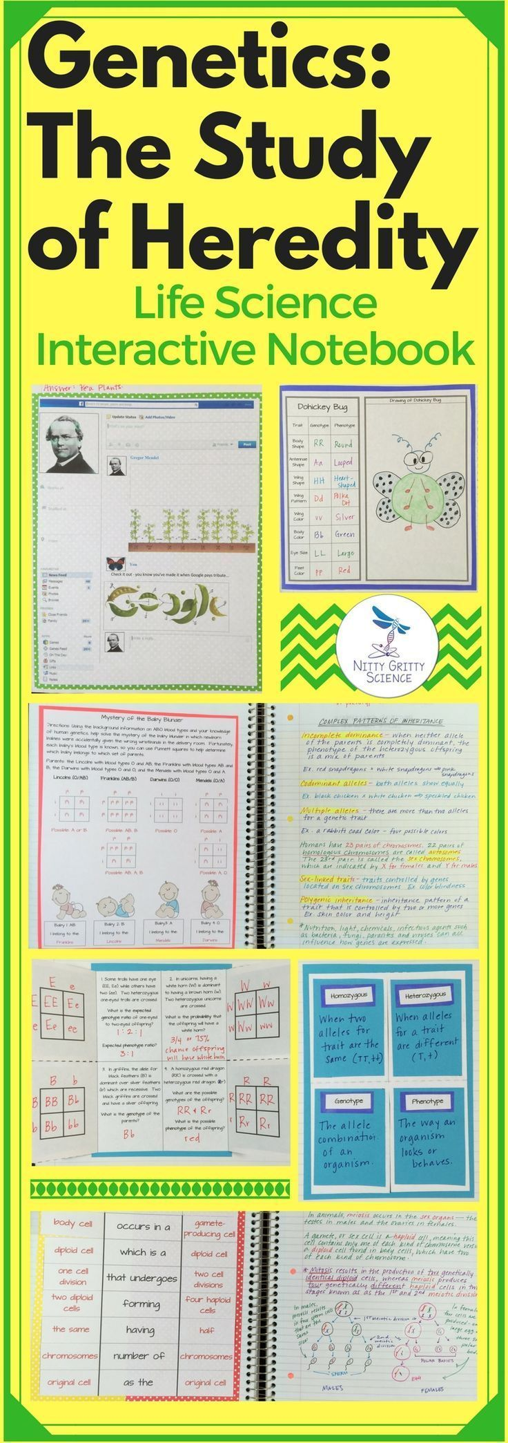 Genetics The Science Of Heredity Life Science Interactive Notebook Includes The Following Main Interactive Science Notebook Life Science Interactive Notebooks