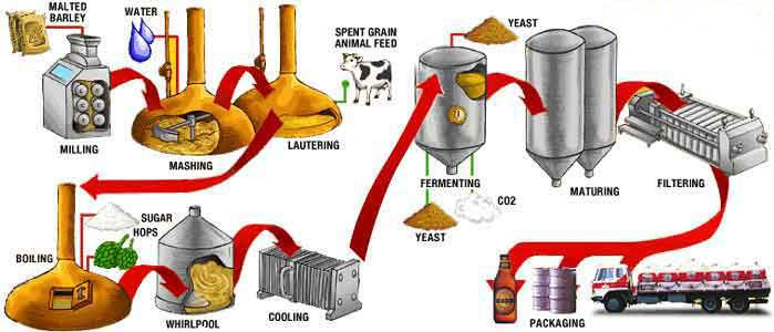 Beer Production Flow Chart Google Search Beer