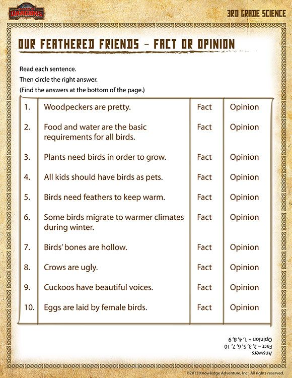 third grade science worksheets | ... Feathered Friends ...
